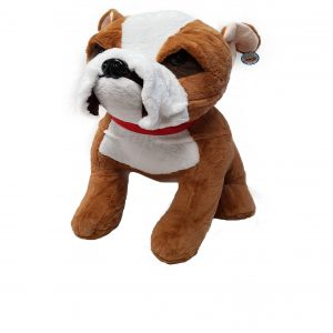 Bulldog with red collar