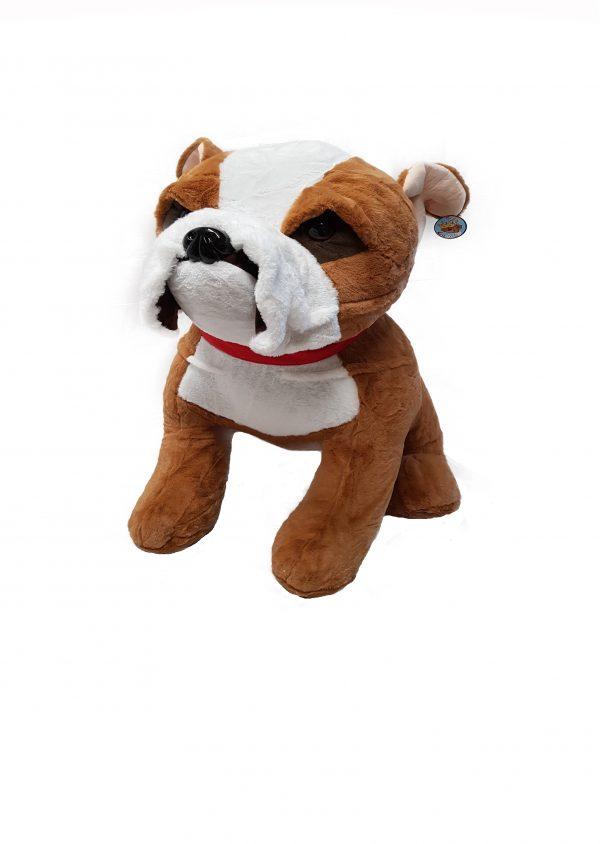 Bulldog with red collar